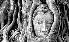 Ayutthaya – Greatness in Ruins article cover
