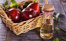 How Apple Cider Vinegar can help you Lose Weight article cover