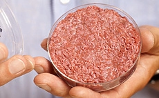Lab-grown meat - the future of cruelty-free diet? article cover