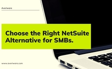 How to Pick Netsuite Alternative ERP Software article cover