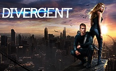 Best New YA Series After Finishing Divergent article cover